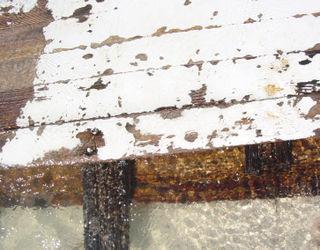Board Texture2