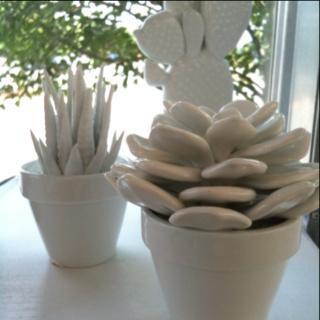 Ceramic Plants ?